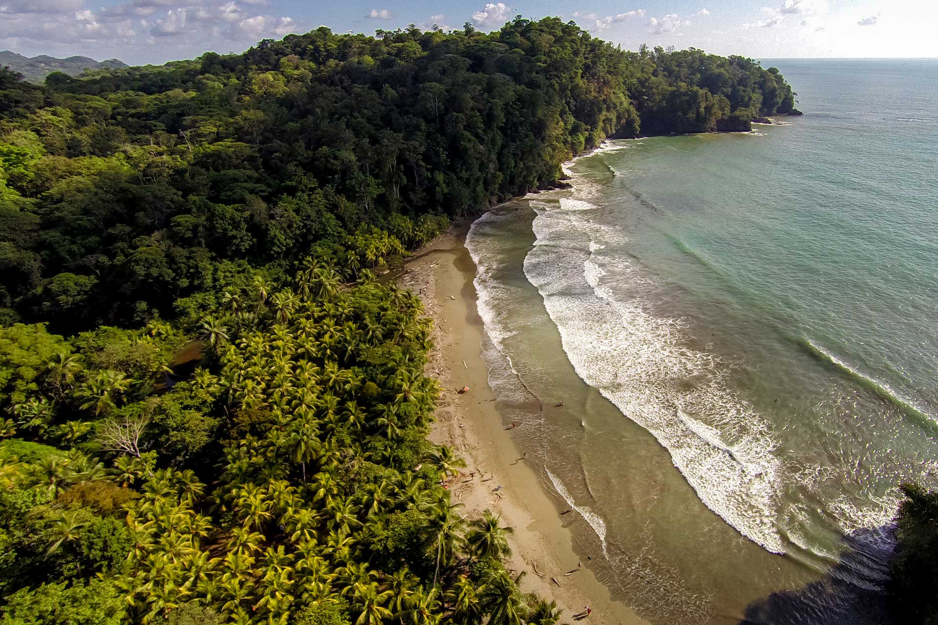 Rainforest and beach, Costa Rica